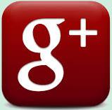 Wisucam Sur Google+